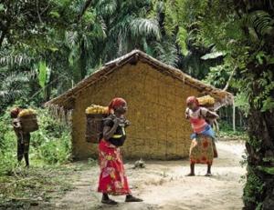 Patrick Wilocq -Sur la route de Bikoro a Bokonda