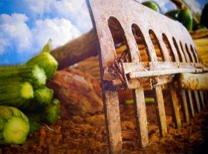 ΕΚΑΤΟΜΒΑΙΩΝ μήνας αφιερωμένος στον Απόλλωνα, το τέλος των αγροτικών εργασιών