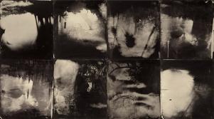 "© Sally Mann ""Blackwater"" 2010 Aμβροτυπία σε πλέξιγκλας, 6 μέρη"