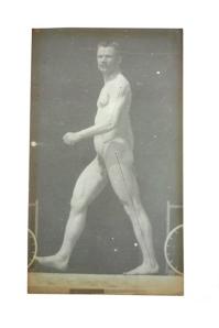 8-Etienne-Jules Marey, Walking man, circa 1895 (A), © Etienne-Jules Marey (του οποίου οι μελέτες πάνω στην κίνηση προηγήθηκαν αυτών του γνωστότερου Eadweard Muybridge)
