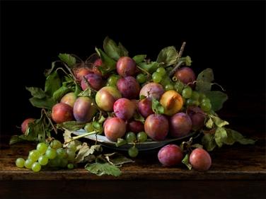 Paulette Tavormina 'Orchard Plums', 2016. Courtesy Robert Mann Gallery