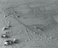 Man Ray -'dust breeding'