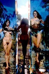 Nude on Tracks_1962-1977