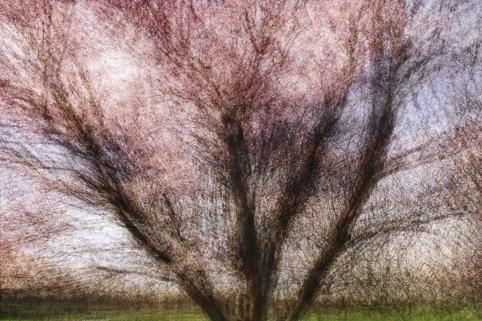© jacob gils, aarhus #1, 2014