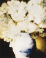 Flowers, 1980 by Cy Twombly © Nicola Del Roscio Foundation