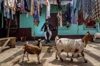 Περρού, 36 ετών, Brazzaville. © Tariq Zaidi